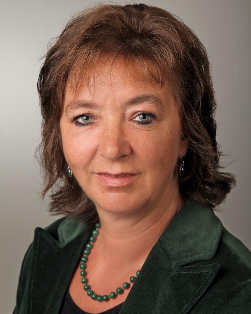 Prof. Dr. Petra Völkel